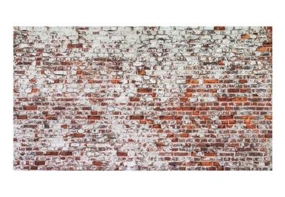 Nástenné maľby XXL - Ozvena dávnych dní 500x280