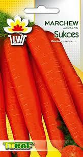 Морковь ДОПОЗДНА УСПЕХ
