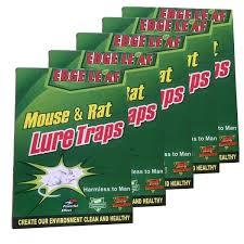 Lep pułapka lepowa na myszy myszołapka łapka 5szt
