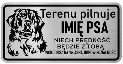 Примечание Собака сталь Табличка с именем собаки