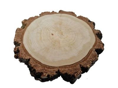 Suchy plaster drewna krążek drewniany 10-12 cm HIT