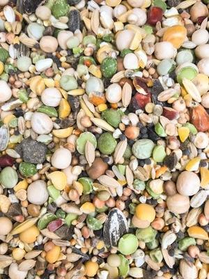 MIX zbożowy karma dla gołębi pozagatunkowa 25 kg