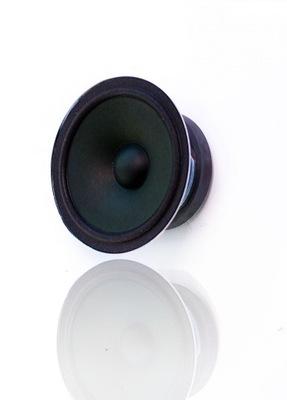 Tonsil głośnik GDM 10/80/2 8 Ohm