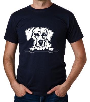 koszulka RHODESIAN RIDGEBACK PIES DOG prezent