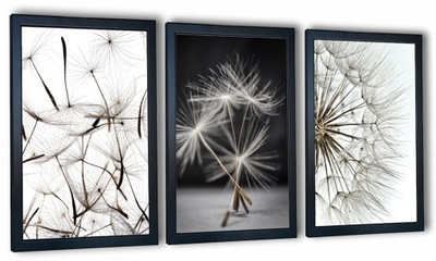 комплект 3 изображения в плечо фотографии одуванчик 99x43