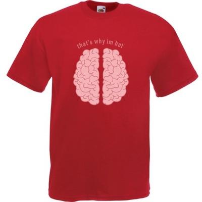 Koszulka mózg that's why i'm hot XXL ceglana czerw