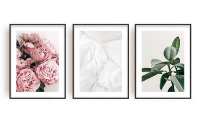 Цветок комплект 3 изображения - Серия - плакат PARIS STYLE