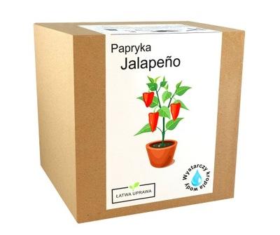 комплект ??? Урожай Перец Чили Халапеньо - перец