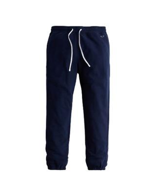 Męskie spodnie dresowe Jogger Pants Hollister L