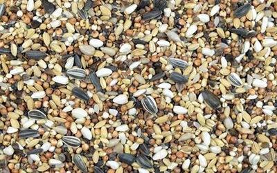 KRMIVO Z DIVOKÝCH VTÁKOV Jemné semená 20kg