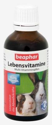 Beaphar Vitamine witaminy dla gryzonia