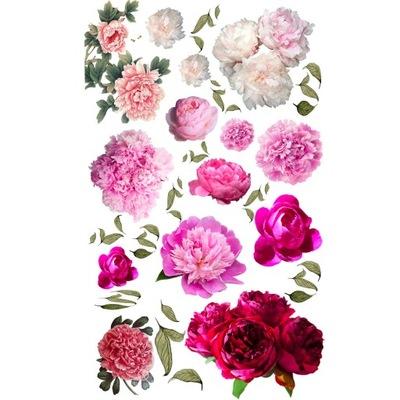 Naklejki na ścianę Piwonie Kwiaty
