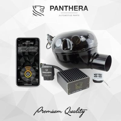 АКТИВНЫЙ ВЫХЛОП PANTHERA CUBE 5 (V6, V8, V12 SOUND)