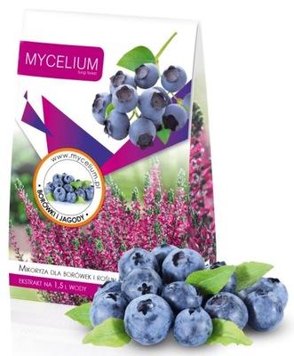 Мицелий Микоризные Черника? ягоды ВЫСОКАЯ фрукты