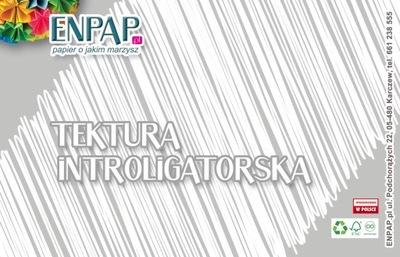 TEKTURA INTROLIGATORSKA SZARA A3 2,5 MM /OP.10 SZT