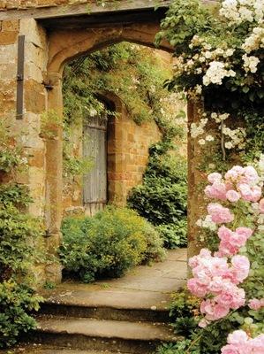 Настенные фрески УЛИЦА Италия цветы Кухня 184x254