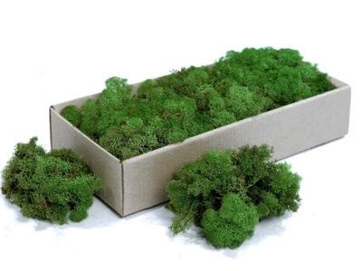 олений мох 50g! Moss Green
