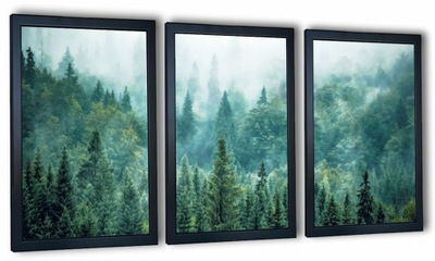 современный комплект 3 изображений в плечо лес в тумане