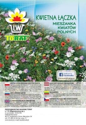 KWIATY POLNE kwietny trawnik łąka MIESZANKA 100g