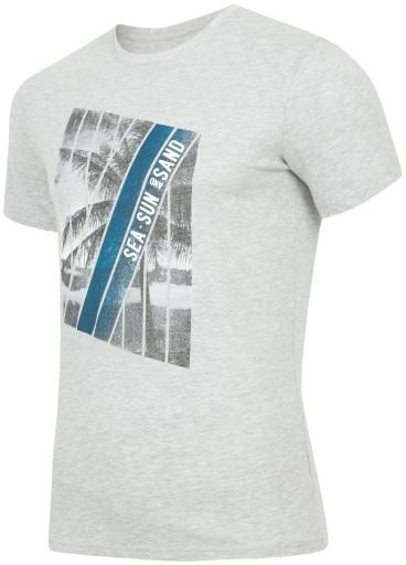 887e42fc28 T-shirt koszulka męska Everhill TSM705 r XXL 7825756382 - Allegro.pl