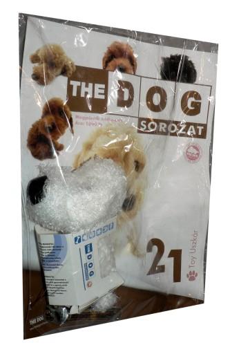 Kolekcja The Dog Nr 21 Pudel Miniaturowy 12 90 Zl Allegro Pl Raty 0 Darmowa Dostawa Ze Smart Krakow Stan Nowy Id Oferty 8623173377