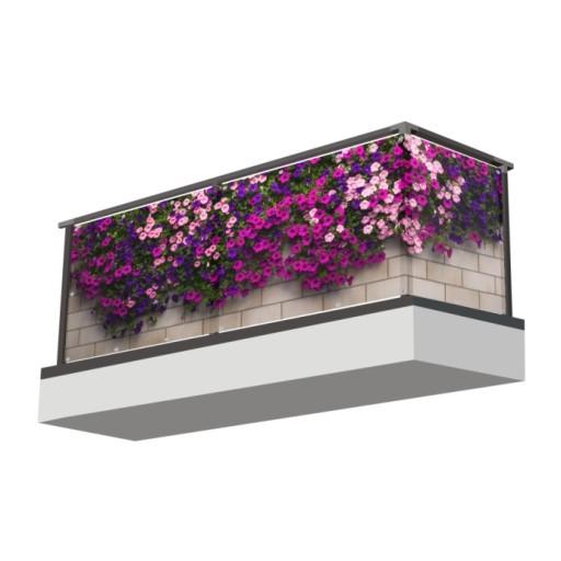Osłona Balkonowa Osłona Na Balkon Kwiaty Surfinie