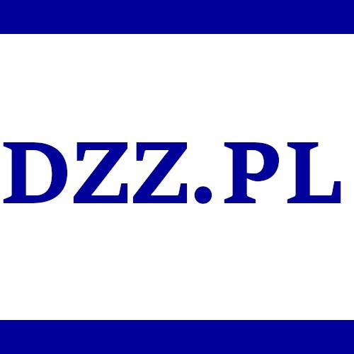 DZZ.PL