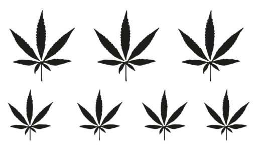 H30 Tatuaż Zmywalny Tymczasowy Ganja Marihuana Thc