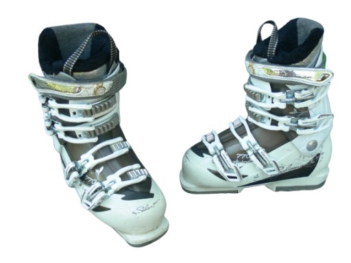 Buty narciarskie Salomon Divine 55