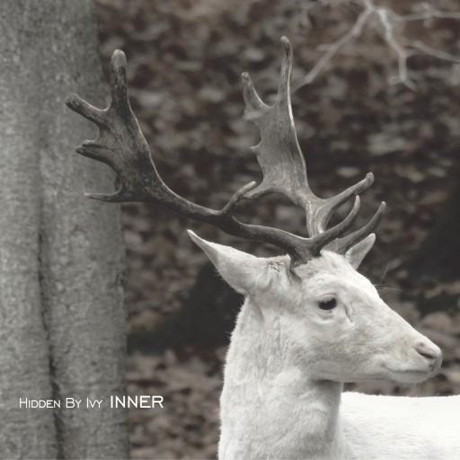 "HIDDEN BY IVY ""INNER"" 2019 preorder"