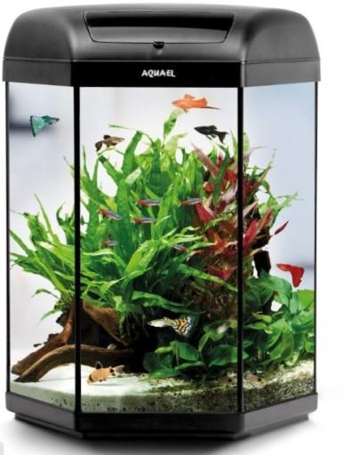 Aquael Akwarium Sześciokątne 60l Hexa Shrimp Led