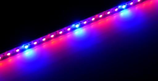 Świetlówka LED PLANT do roślin 50cm akwarium GROW