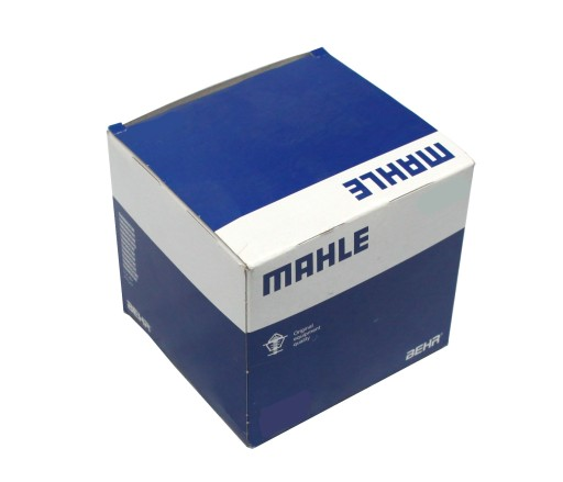 039 RS 00101 0N0 MAHLE A SET RING PISTON