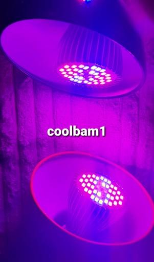 Lampa panel LED growbox uprawa żarówka grow E27