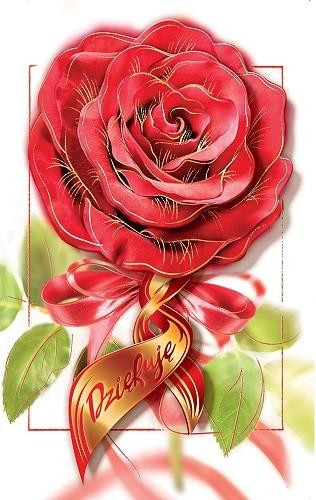 Kartki Na Podziekowania Dziekuje Elegancka Kd 05 9511972269 Allegro Pl