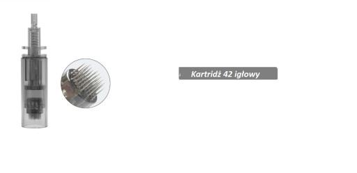 Zestaw 10 kartridży Dr Pen A7 Dermapen 42 igłowe