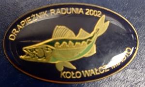 Odznaka wędkarska PZW Drapieżnik Radunia 02 Wałcz