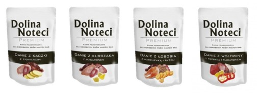 Dolina Noteci Premium Danie 100g mix 20 szt