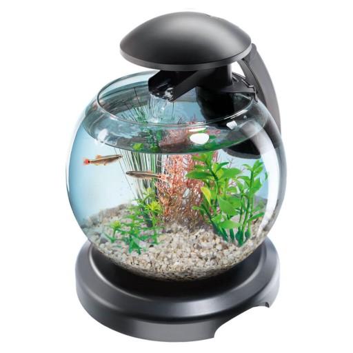 Tetra Cascade Globe Black Led Kula 6 8l Z Filtrem 8883450082 Allegro Pl