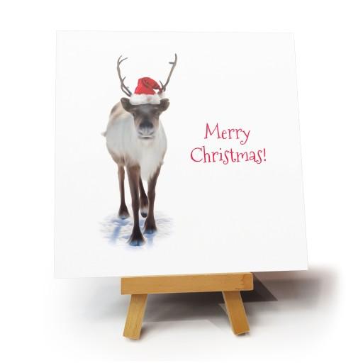 """Kartka bożonarodzeniowa """"Oh Deer"""""""