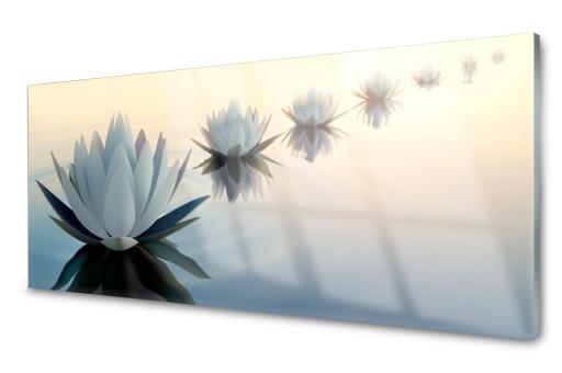 Lacobel Panel Szklany Kuchenny Lilie Wodne 120x60