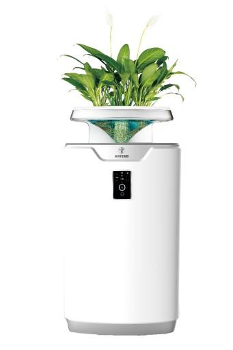 GAP - Zielony oczyszczacz powietrza Lavender 3