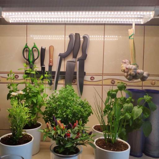 ŚWIETLÓWKA T8 LED GROW UPRAWA ROŚLIN LAMPA GROWBOX