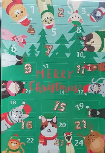 Kalendarz adwentowy dla kotów kota