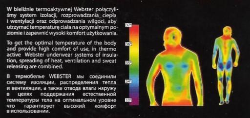WEBSTER KOMPLET BIELIZNA ODZIEŻ TERMOAKTYWNA r. XS 10155947773 Odzież Męska Komplety IX ZNZLIX-4
