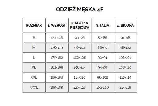 4F Spodenki Plażowe Męskie H4L21-SKMT001-35S S 10762364189 Odzież Męska Spodenki HV ZRVTHV-7