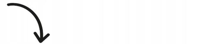 BLUZKA TUNIKA BULDOG FRANCUSKI KOLORY 164 J98A 7946503169 Dziecięce Odzież FF ZGSYFF-6