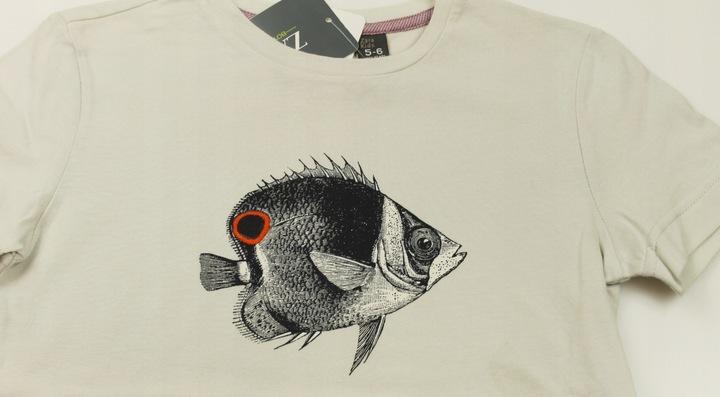 ZARA t-shirt koszulka NADRUK 5-6 lat 116 cm 9191659656 Dziecięce Odzież OE ZVDAOE-8