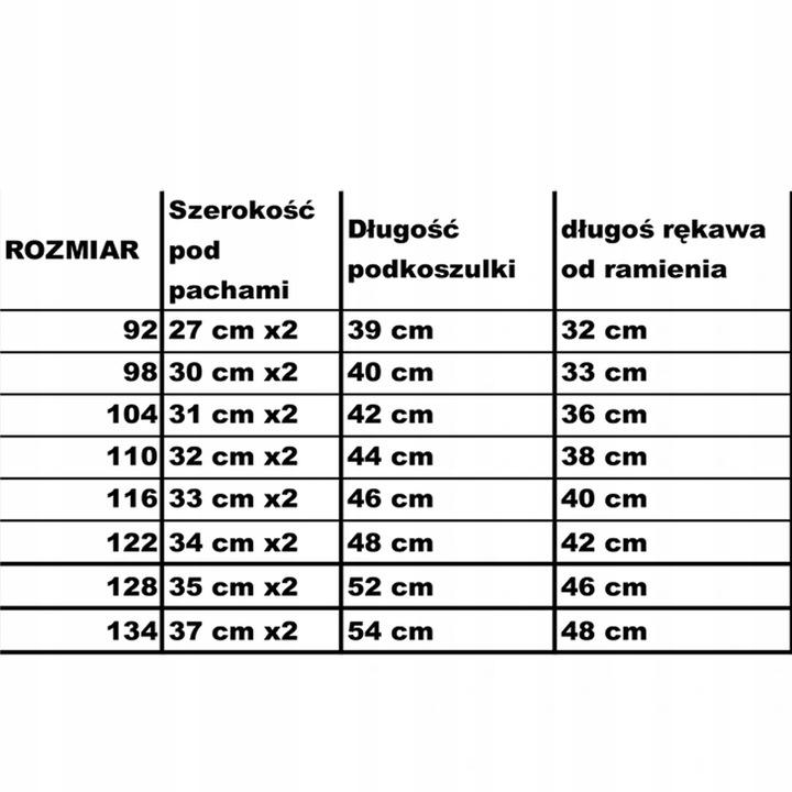 BLUZKA CHŁOPIĘCA SPORTOWA LUŹNA PRZEDSZKOLAKA 134 9263829498 Dziecięce Odzież LR MKOBLR-2